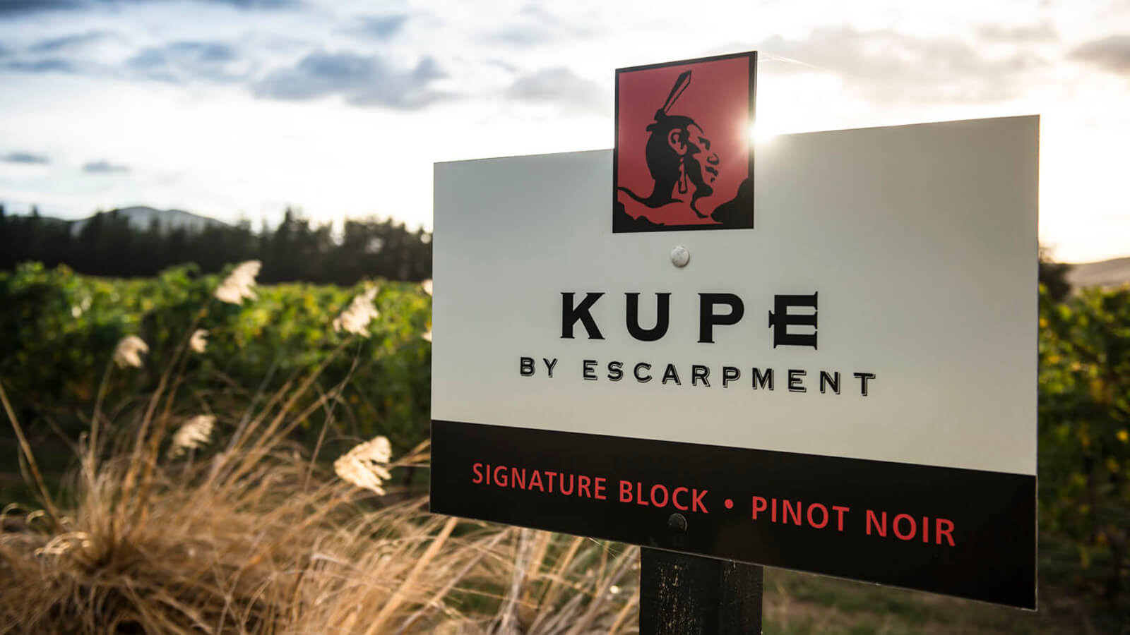 Escarpment Pinot Noir 2015, Martinborough, New Zealand